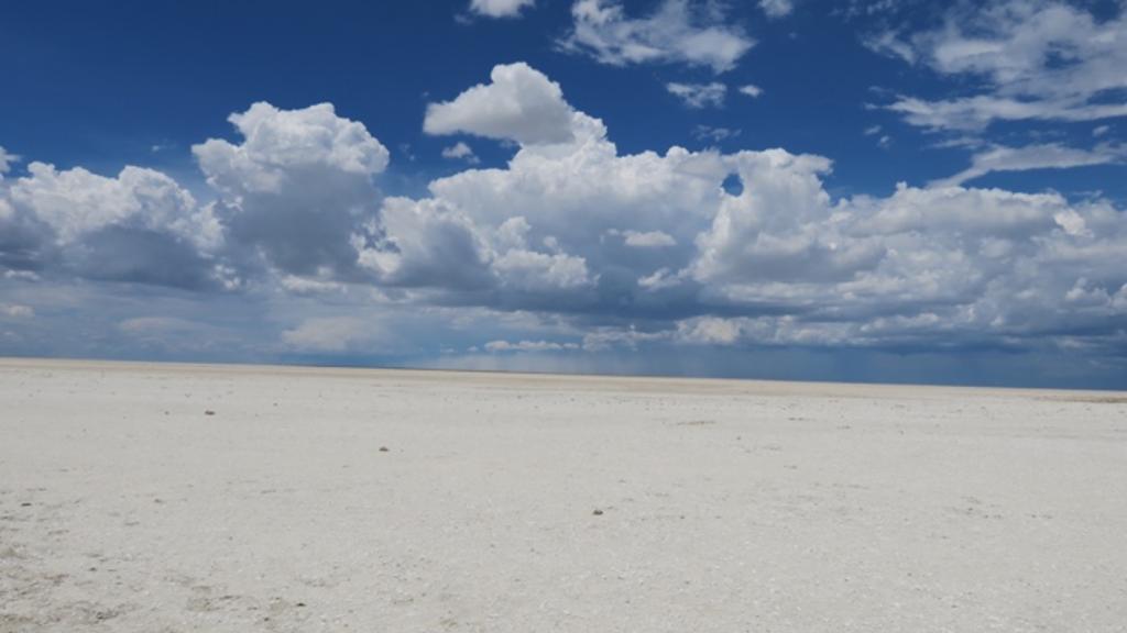 TA1.5: Makgadikgadi Salt Pans, Botswana. The flat surface of the Sua pan covered by a crust of evaporitic minerals (e.g., halite, gypsum).