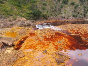 TA1.2: Rio Tinto, south-west Spain is a very acidic 100 km river with intense red dark colour.