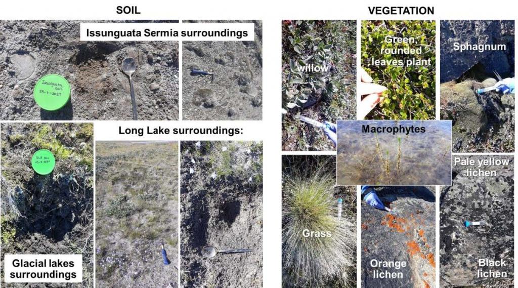 Soil & Vegetation studies at the Kangerlussuaq Planetary Analogue Field Site.  Credits: Laura Sánche-García/CAB (INTA-CSIC).